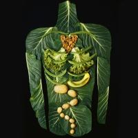 Warsztaty kulinarne kuchni wegańskiej i witariańskiej - relacja